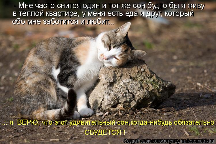 Котоматрица: - Мне часто снится один и тот же сон,будто бы я живу  ... я  ВЕРЮ, что этот удивительный сон,когда-нибудь обязательно  СБУДЕТСЯ ! в тёплой кварти