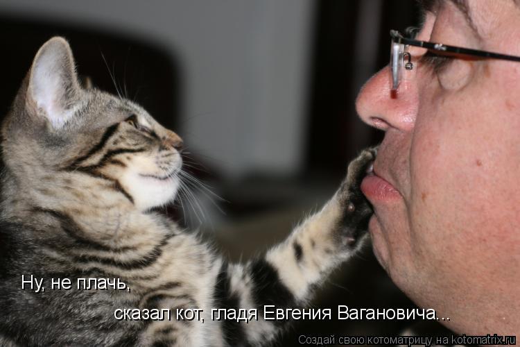Котоматрица: Ну, не плачь, сказал кот, гладя Евгения Вагановича...
