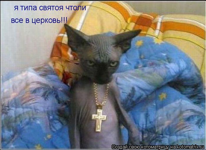 Котоматрица: я типа святоя чтоли все в церковь!!!