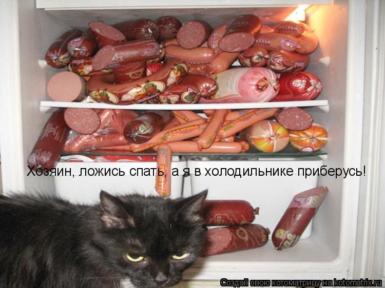 Котоматрица: Хозяин, ложись спать, а я в холодильнике приберусь!