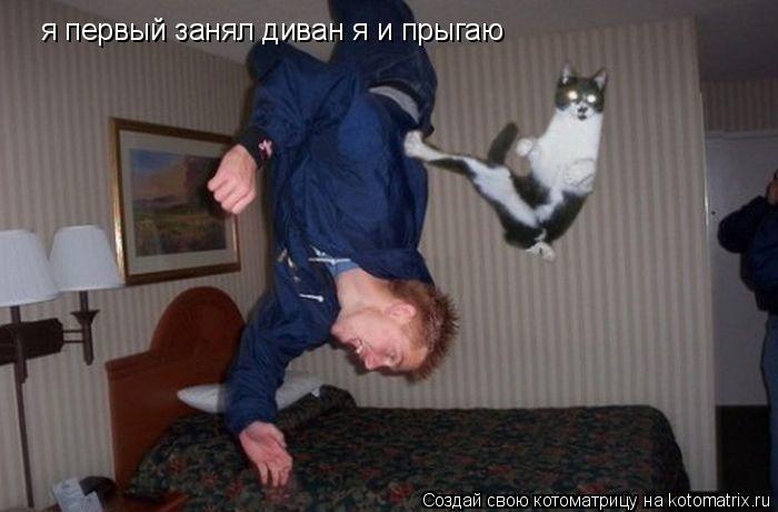 Котоматрица: я первый занял диван я и прыгаю