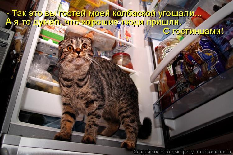 Котоматрица: - Так это вы гостей моей колбаской угощали...  А я то думал, что хорошие люди пришли.  С гостинцами!