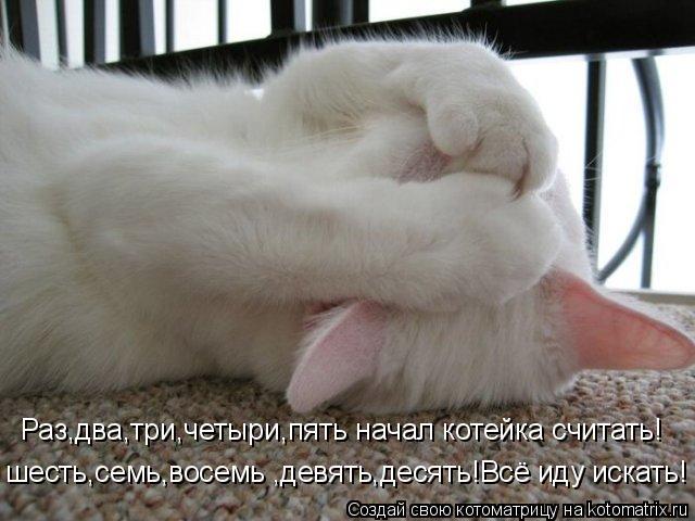 Котоматрица: Раз,два,три,четыри,пять начал котейка считать! шесть,семь,восемь ,девять,десять!Всё иду искать!