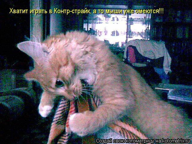 Котоматрица: Хватит играть в Контр-страйк, а то мыши уже смеются!!!