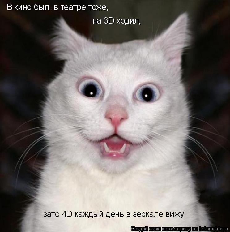 Котоматрица: В кино был, в театре тоже, на 3D ходил,  зато 4D каждый день в зеркале вижу!