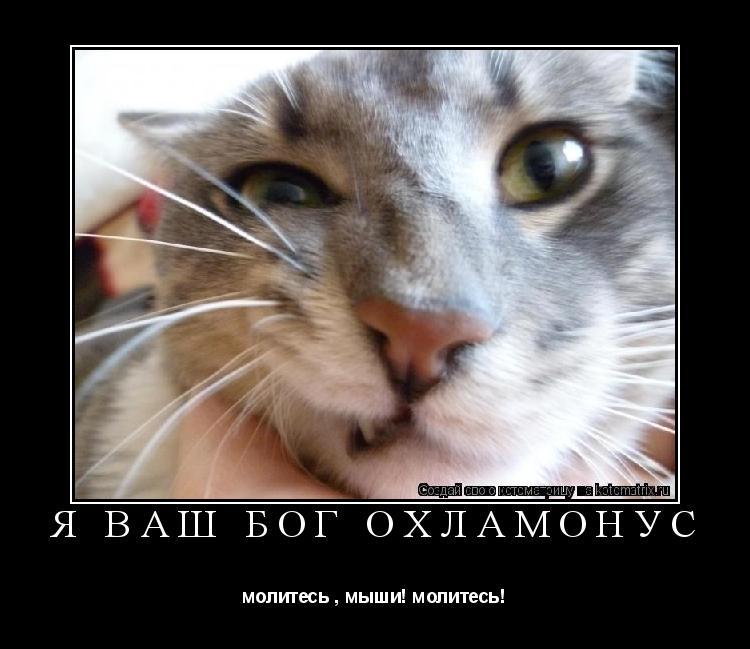 Котоматрица: Я Ваш Бог ОхламонУс молитесь , мыши! молитесь!