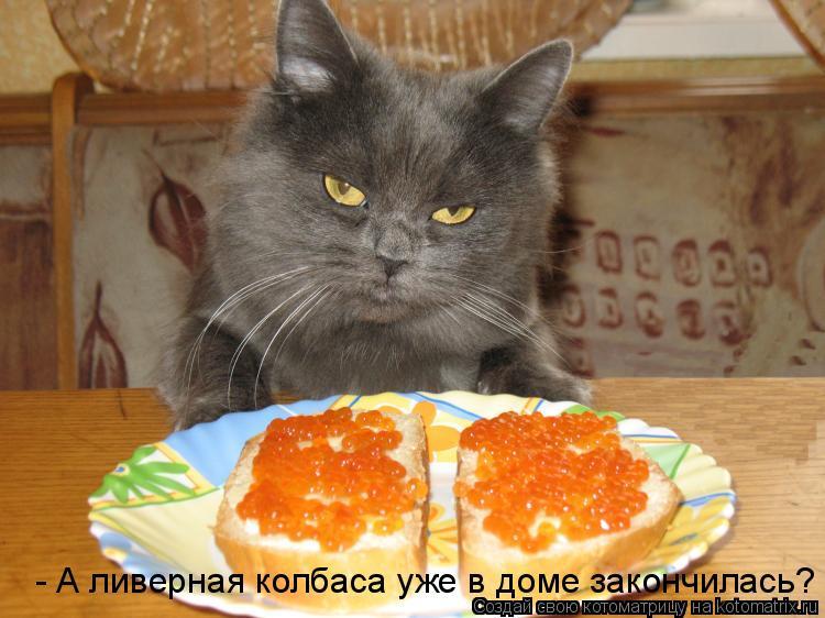 - А ливерная колбаса уже в доме закончилась?