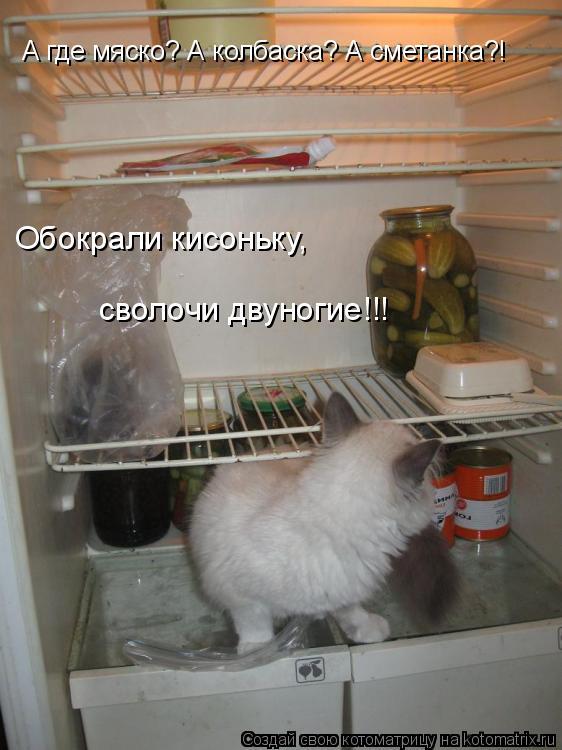 Котоматрица: А где мяско? А колбаска? А сметанка?! Обокрали кисоньку,  сволочи двуногие!!!