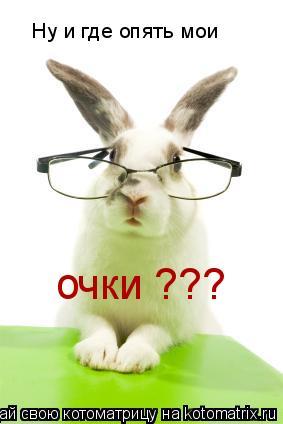 Котоматрица: Ну и где опять мои очки ???