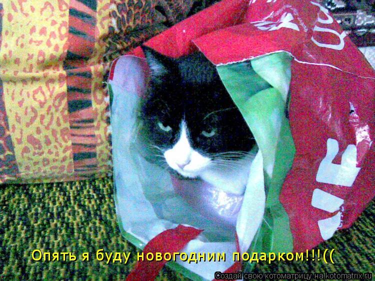 Котоматрица: Опять я буду новогодним подарком!!!((