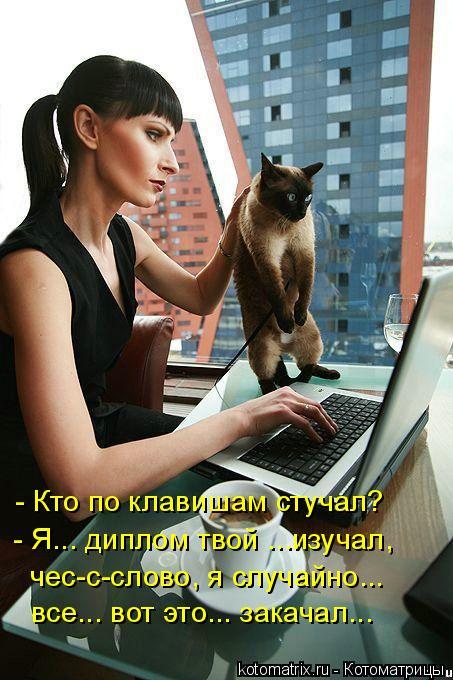 Котоматрица: - Кто по клавишам стучал? - Я... диплом твой ...изучал, чес-с-слово, я случайно... все... вот это... закачал...