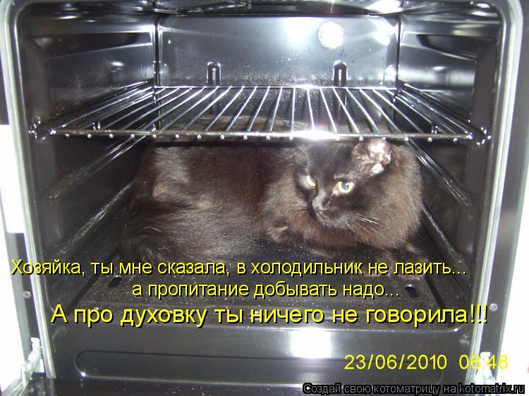 Котоматрица: Хозяйка, ты мне сказала, в холодильник не лазить... а пропитание добывать надо... А про духовку ты ничего не говорила!!!