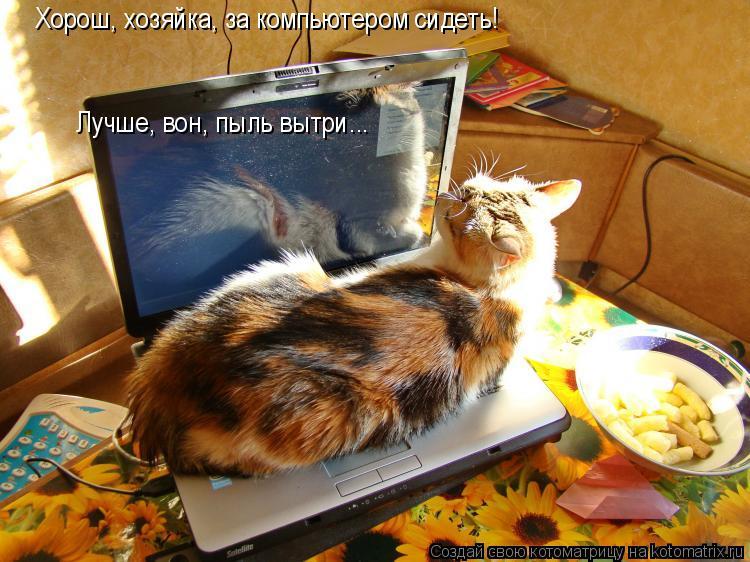 Котоматрица: Хорош, хозяйка, за компьютером сидеть!  Лучше, вон, пыль вытри...