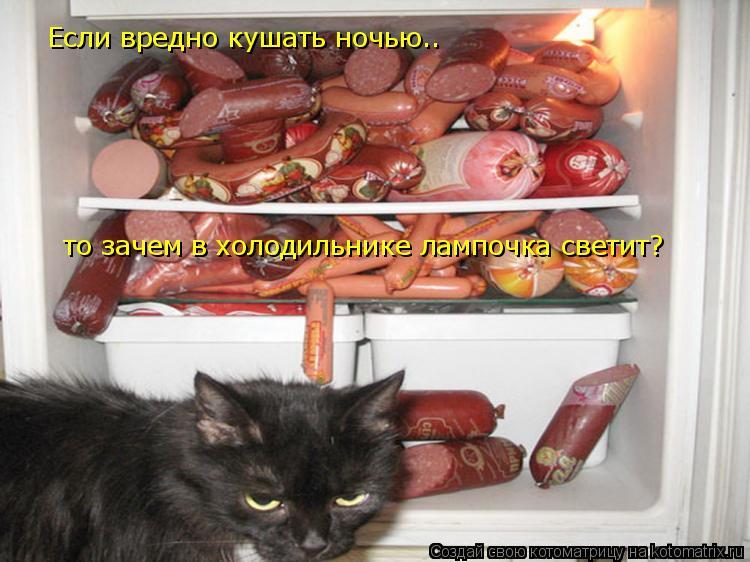Котоматрица: Если вредно кушать ночью.. то зачем в холодильнике лампочка светит?