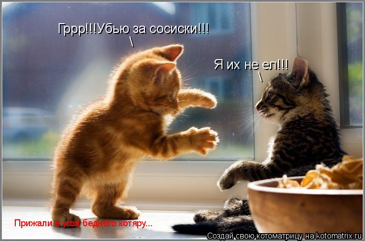 Котоматрица: Гррр!!!Убью за сосиски!!! \ Я их не ел!!! \ Прижали в угол бедного котяру...