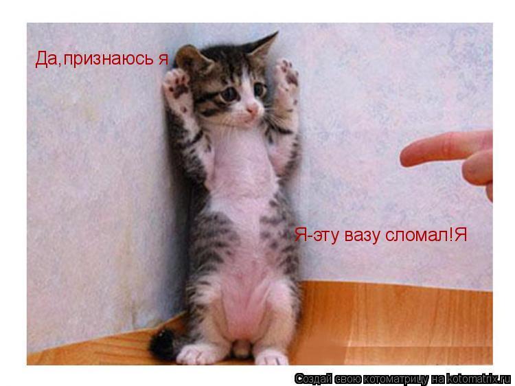 Котоматрица: Да,признаюсь я Я-эту вазу сломал!Я