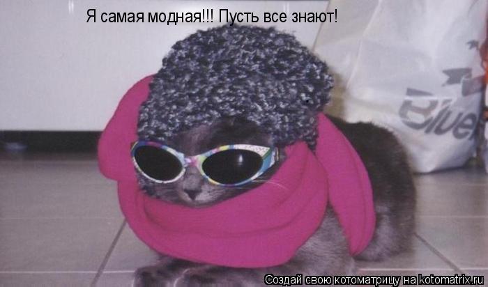 Котоматрица: Я самая модная!!! Пусть все знают!
