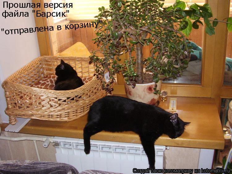 """Котоматрица: Прошлая версия  файла """"Барсик"""" """"отправлена в корзину"""""""