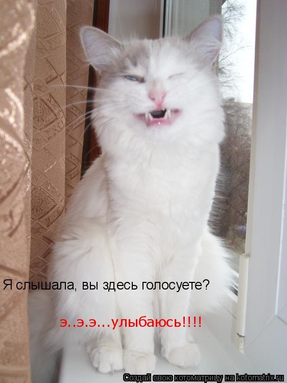 Котоматрица: Я слышала, вы здесь голосуете? э..э.э...улыбаюсь!!!!