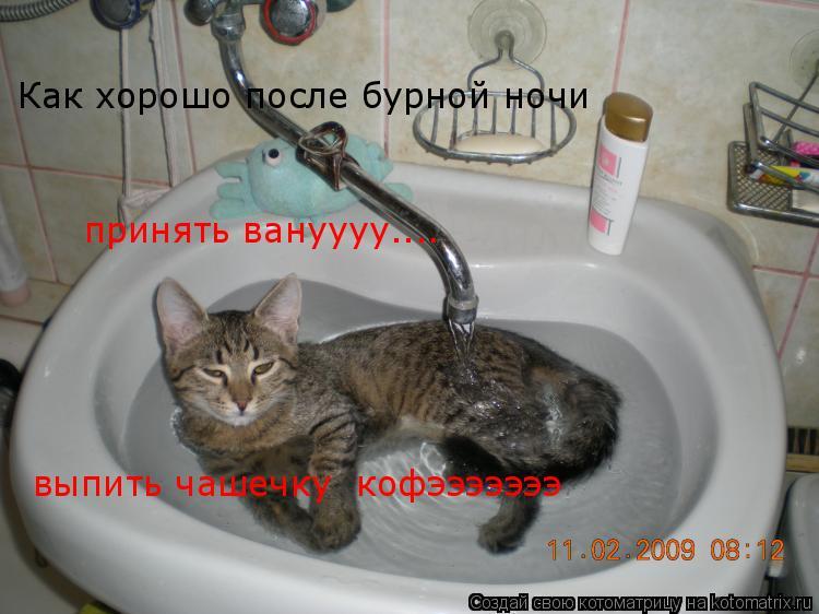 Котоматрица: Как хорошо после бурной ночи принять вануууу.... выпить чашечку  кофэээээээ