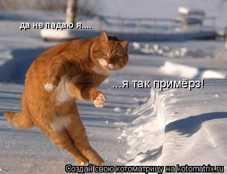 Котоматрица: да не падаю я....  ...я так примёрз!