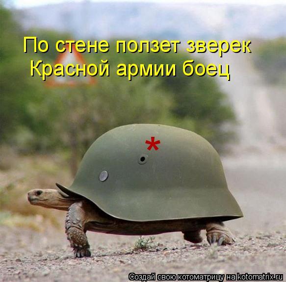 Котоматрица: По стене ползет зверек * Красной армии боец