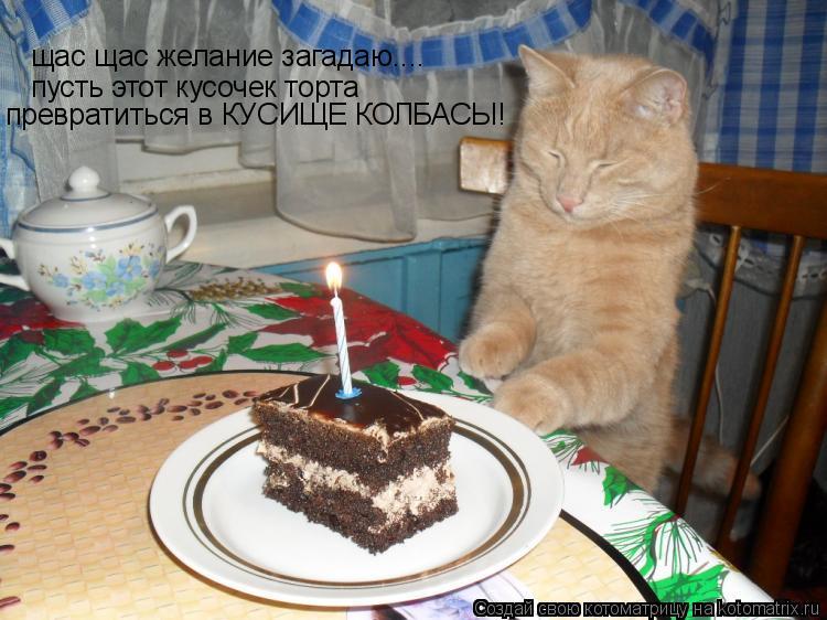 Котоматрица - щас щас желание загадаю.... пусть этот кусочек торта превратиться в КУ