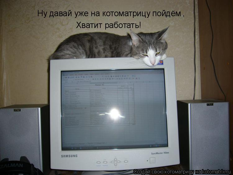 Котоматрица: Ну давай уже на котоматрицу пойдём , Хватит работать!