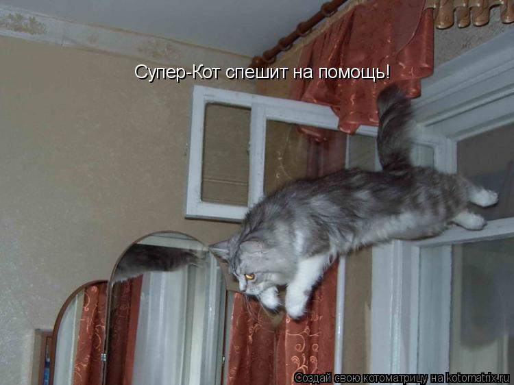 Котоматрица: Супер-Кот спешит на помощь!