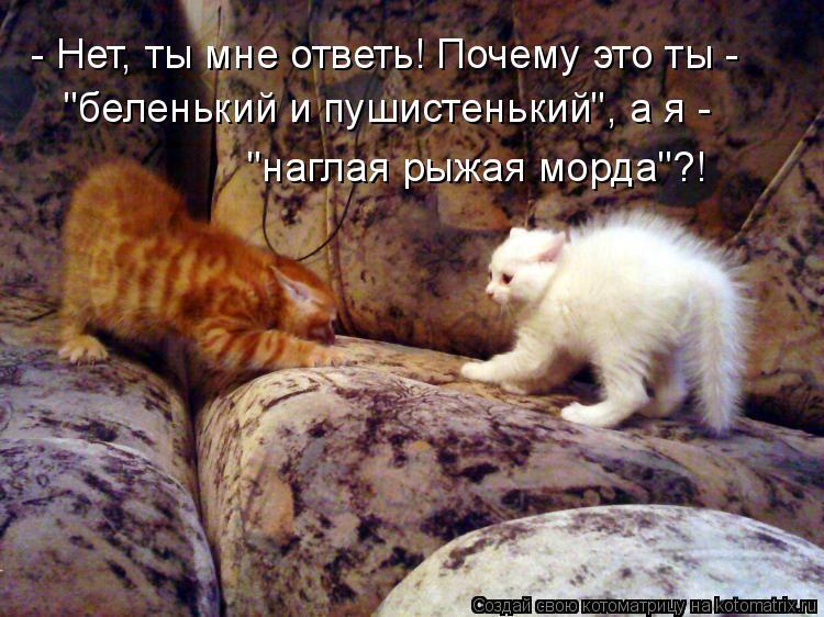 http://kotomatrix.ru/images/lolz/2010/11/11/734223.jpg