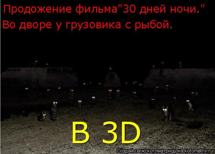 """Котоматрица: Продожение фильма""""30 дней ночи."""" Во дворе у грузовика с рыбой. В 3D"""