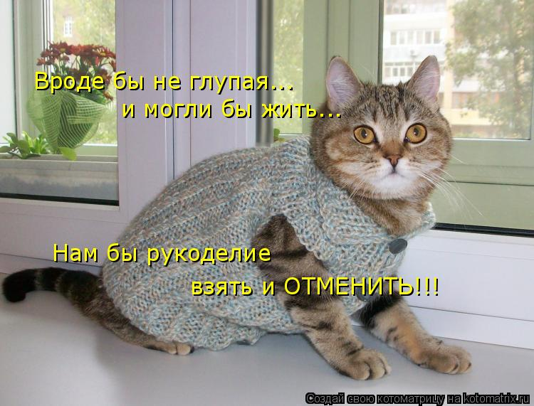 Котоматрица: Вроде бы не глупая... и могли бы жить... Нам бы рукоделие взять и ОТМЕНИТЬ!!!