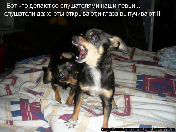 Котоматрица: Вот что делают,со слушателями наши певци... слушатели даже рты открывают,и глаза выпучивают!!!
