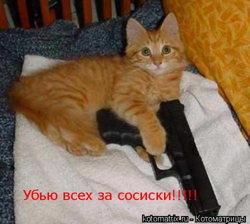 Котоматрица: Убью всех за сосиски!!!!!