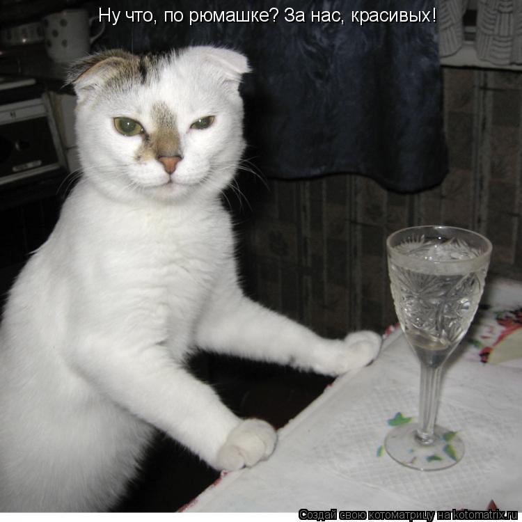 Поздравление а не выпить ли нам по рюмашке