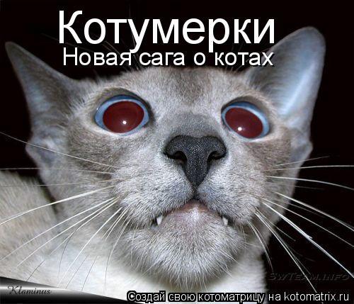 Котоматрица: Котумерки Новая сага о котах