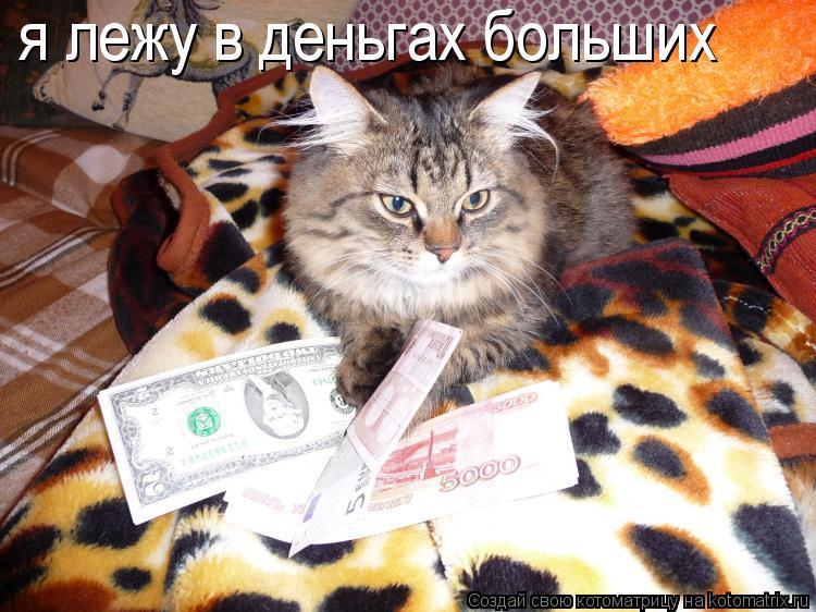 Котоматрица: я лежу в деньгах больших