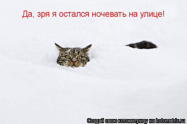 Котоматрица: Да, зря я остался ночевать на улице!