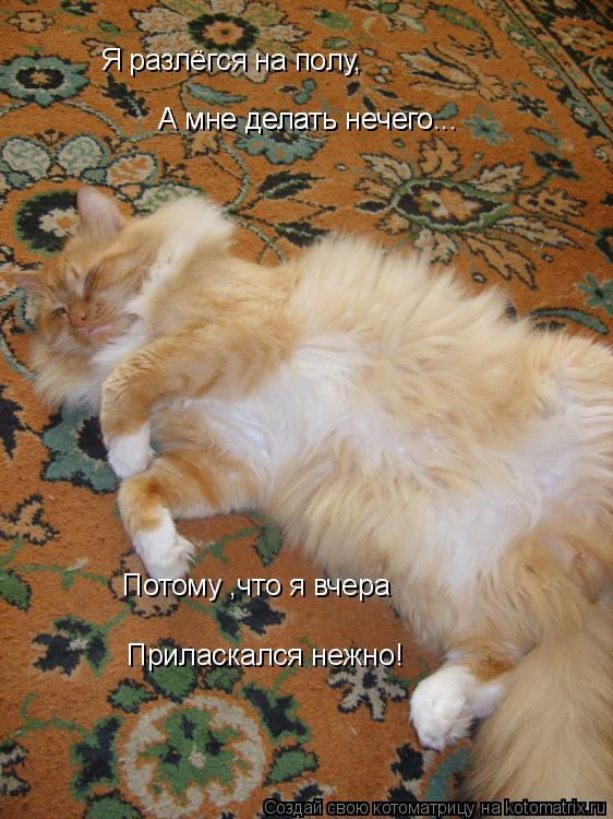 Котоматрица: Я разлёгся на полу, А мне делать нечего... А мне делать нечего... Потому ,что я вчера Приласкался нежно!