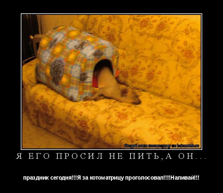 Котоматрица: Я его просил не пить,а он... праздник сегодня!!!Я за котоматрицу проголосовал!!!!Наливай!!!