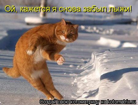 Котоматрица: Ой, кажется я снова забыл лыжи!