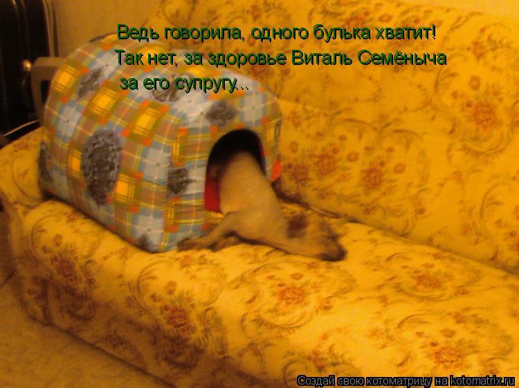 Котоматрица: Ведь говорила, одного булька хватит! Так нет, за здоровье Виталь Семёныча за его супругу...