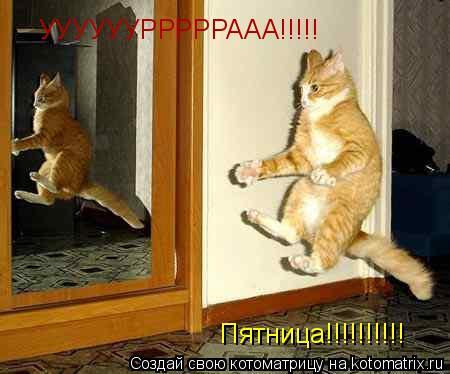 Котоматрица: УУУУУУРРРРРААА!!!!! Пятница!!!!!!!!!!