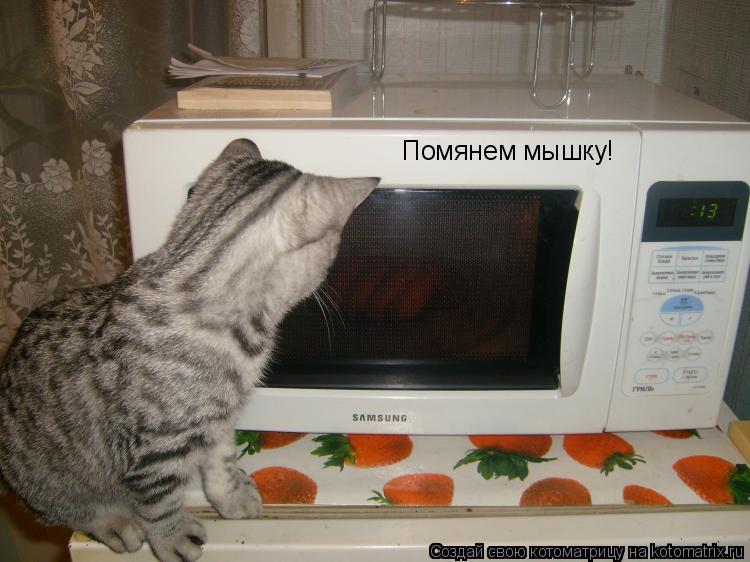 Котоматрица: Помянем мышку!