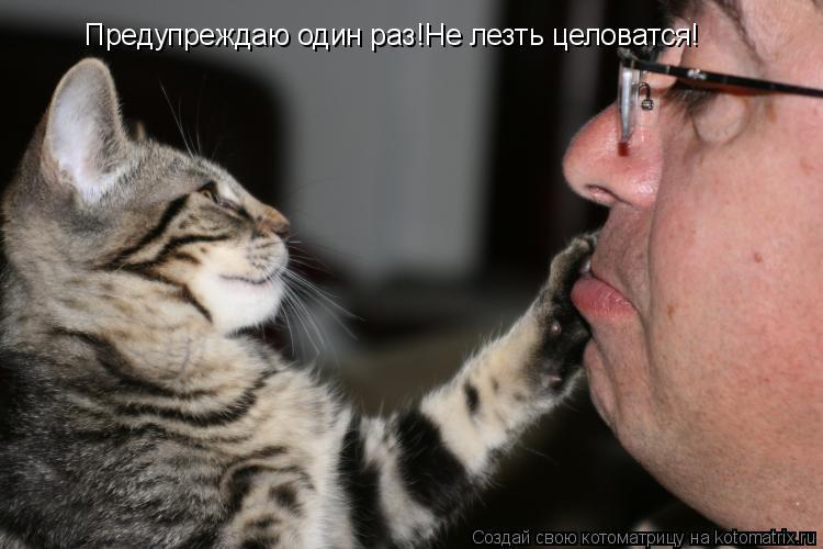 Котоматрица: Предупреждаю один раз!Не лезть целоватся!