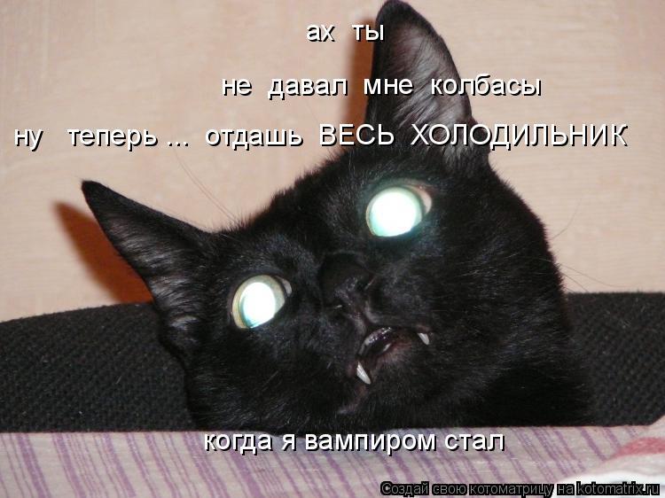 Котоматрица: ах  ты не  давал  мне  колбасы ну   теперь ...  отдашь  ВЕСЬ  ХОЛОДИЛЬНИК когда я вампиром стал