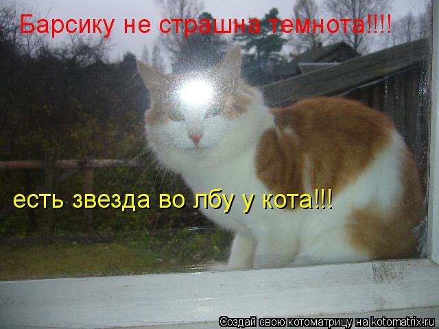 Котоматрица: Барсику не страшна темнота!!!! есть звезда во лбу у кота!!!