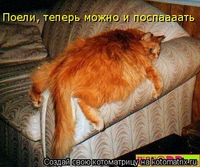 Котоматрица: Поели, теперь можно и поспаааать