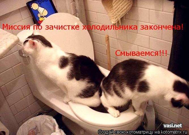 Котоматрица: Миссия по зачистке холодильника закончена! Смываемся!!!