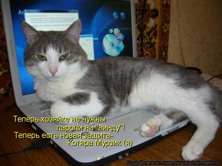 """Котоматрица: Теперь хозяйке не нужны пароли на """"винду""""! Теперь есть новая защита- Котяра Мурзик (я)"""